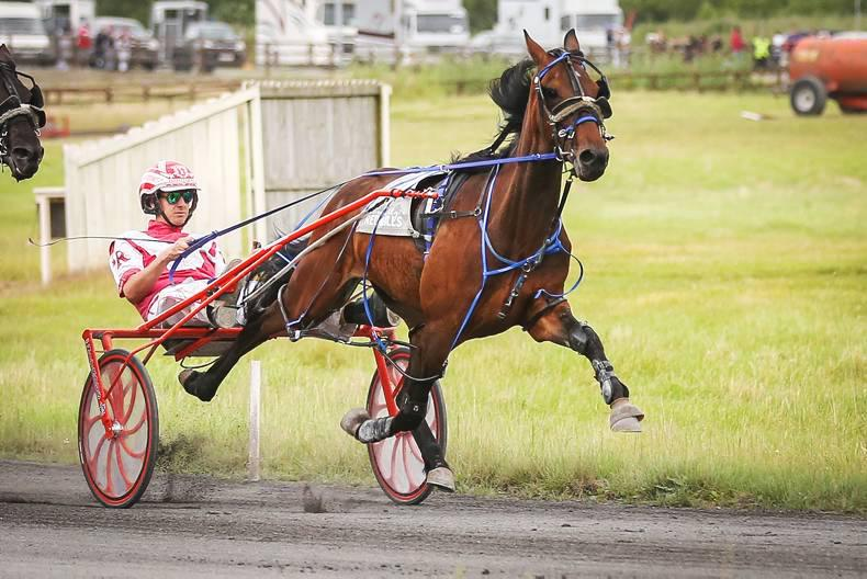 HARNESS RACING: Sepia Sands sweeps on by