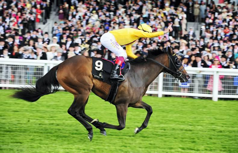 SIMON ROWLANDS: Lady Aurelia in race of the season