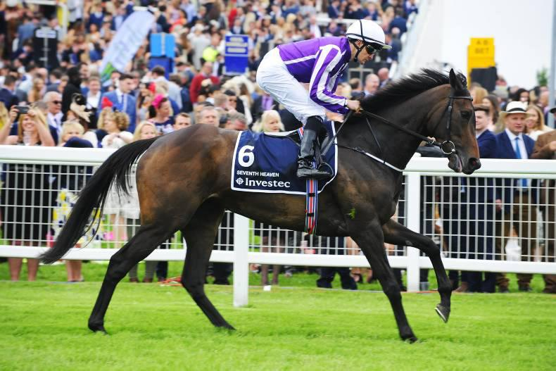 PEDIGREE NOTES: Notable stakes and freshman results