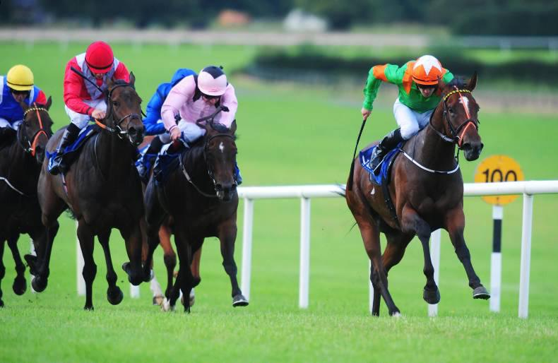 NAAS WEDNESDAY: Lynam's Fort gains further listed gold
