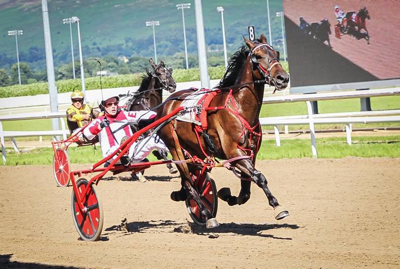 HARNESS RACING: Streamside joy for Joyce
