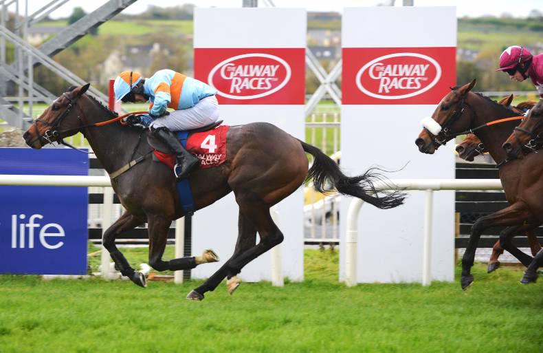 TALKING TRAINER: Galway gambles