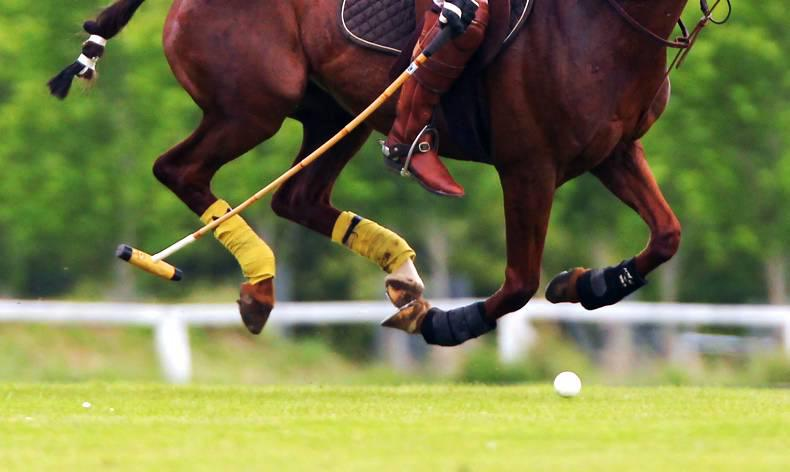 INTERNATIONAL:  Irish polo team just pipped by England
