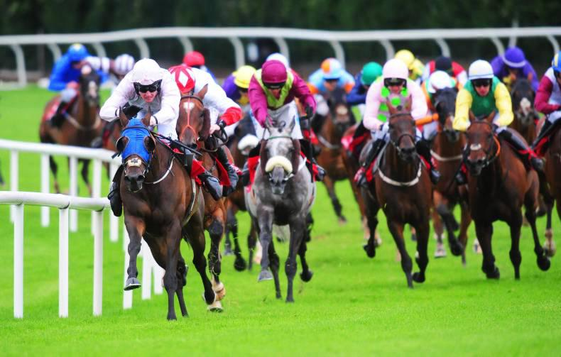 GALWAY MONDAY: Fox swamps rivals to strike gold