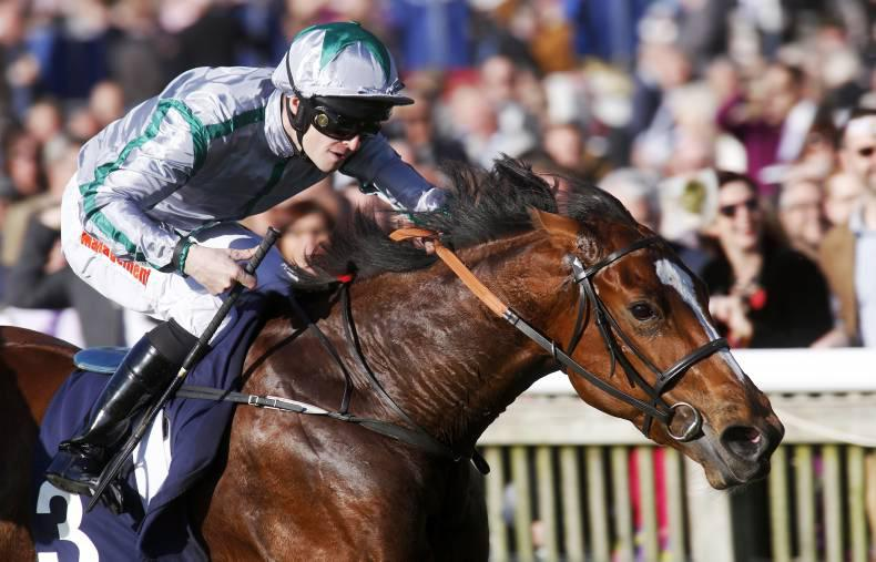 TIME WILL TELL: Rookie should have beaten Namhroodah