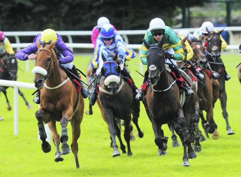 FREE TIPS FOR GALWAY ON THURSDAY