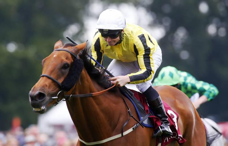 Big Orange pips them again in Goodwood Cup