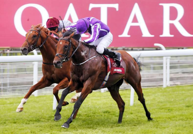 GOODWOOD WEDNESDAY: The Gurkha strikes Gold in Sussex Stakes