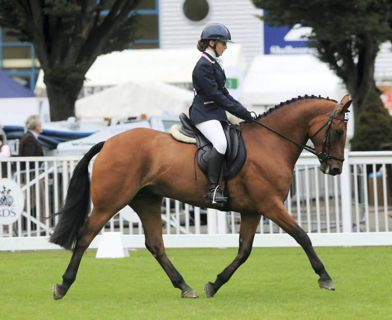 Double victory at Dublin for Kildare Pony Club