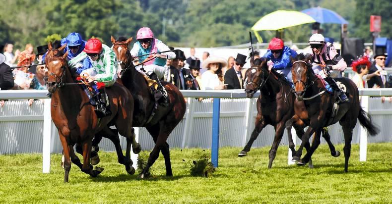 DONN McCLEAN: Third horse trauma