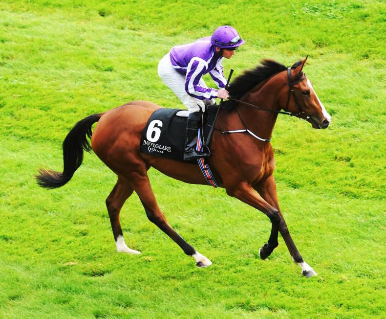 Magical Minding too good in Nassau Stakes at Goodwood