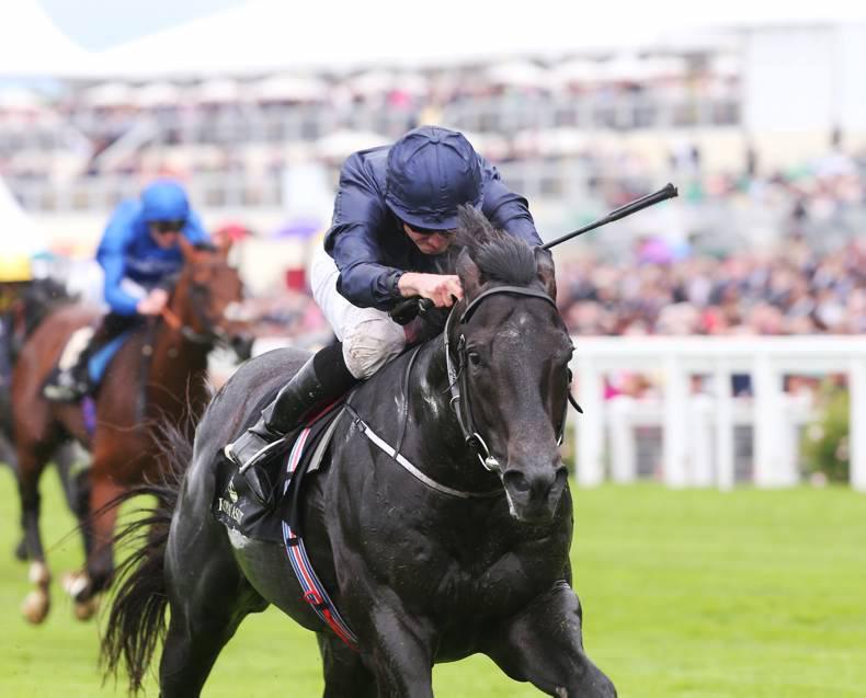 Aidan O'Brien has Caravaggio and Churchill in contention for Phoenix Stakes