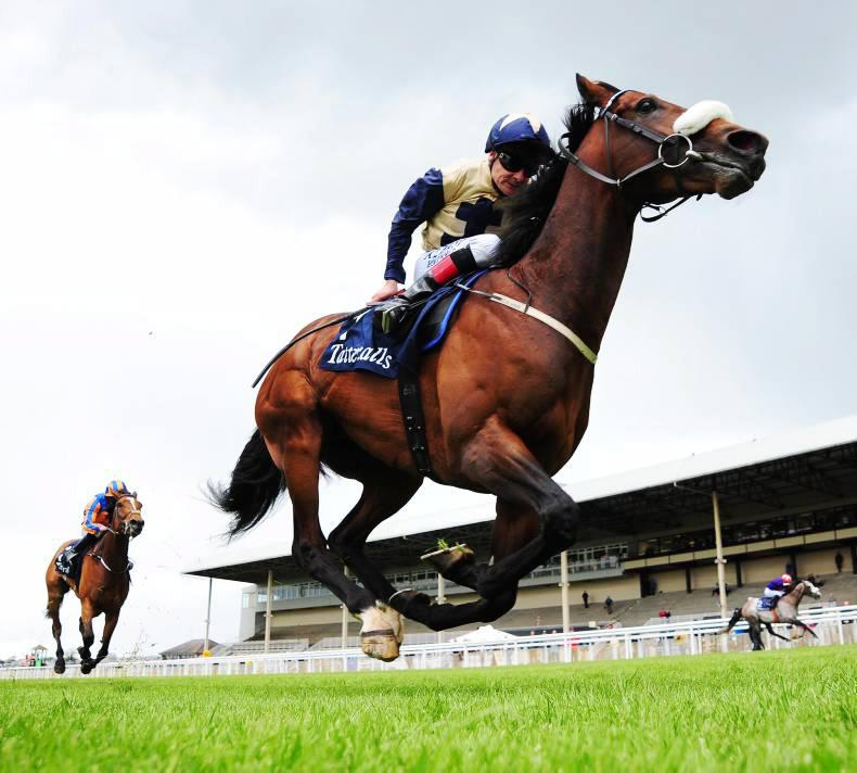 Fascinating Rock heads strong Irish entry in Champion Stakes