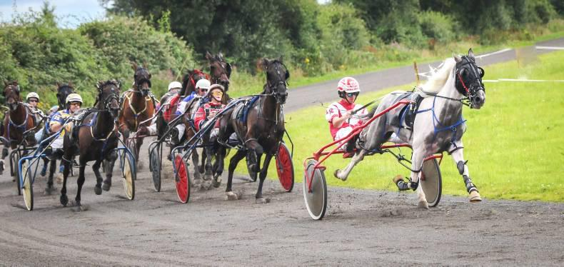 HARNESS RACING:  Cinderella Man gets home in time