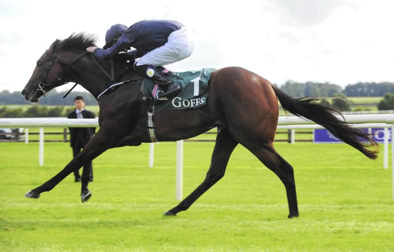 CURRAGH SUNDAY PREVIEW: Eastern to make maximum impact on Phoenix Sprint Stakes