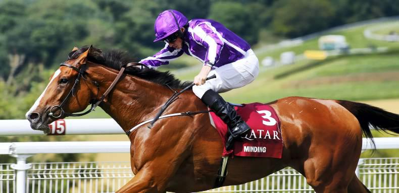 Minding clear in race for Cartier Horse Of The Year