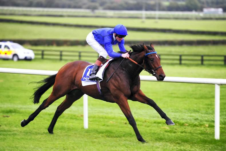 Hit It A Bomb third as Tribal Beat claims gold in Desmond at Leopardstown