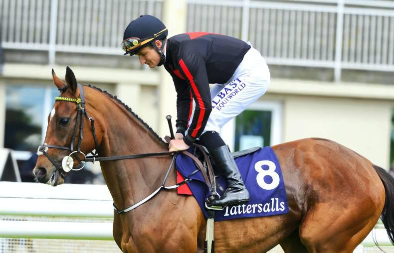 Jet Setting flying as she continues build-up to Fairy Bridge return
