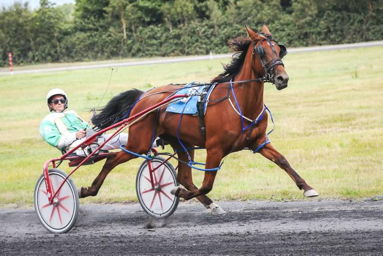 HARNESS RACING: Meadowbranch back in business