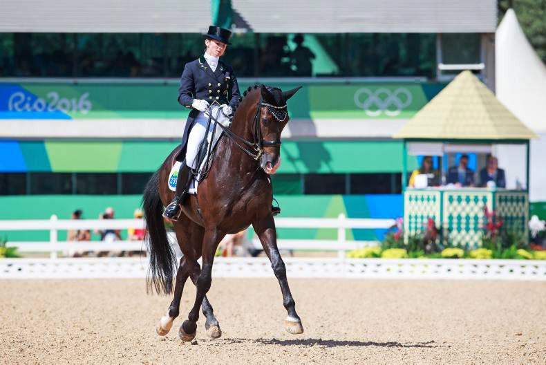 Reynolds does us proud as Dujardin shines with Valegro