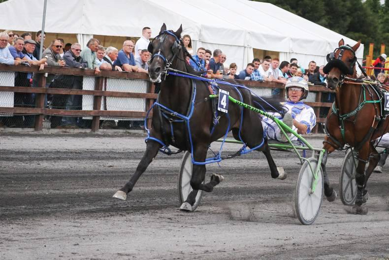 HARNESS RACING: Outstanding day at Vincent Delaney Memorial
