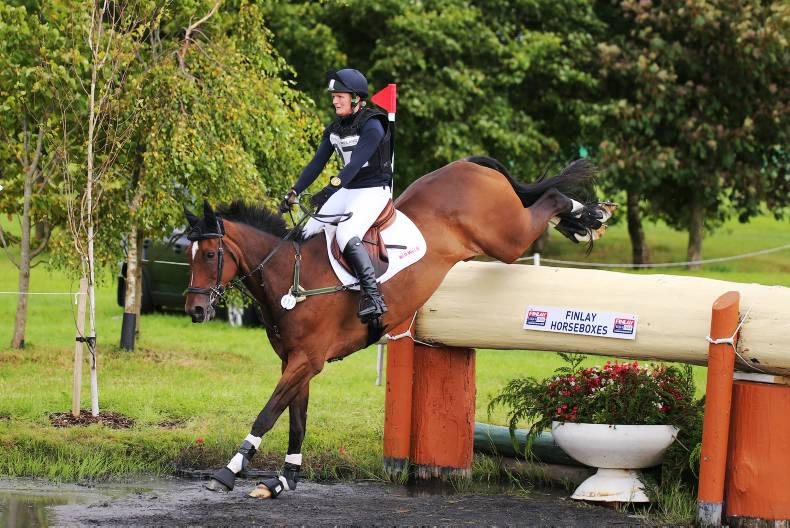 Ex-racehorses discover new lives in eventing and riding classes