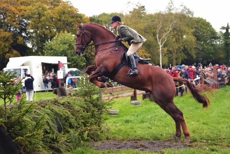 Selection dates set for Hunter Show and Go