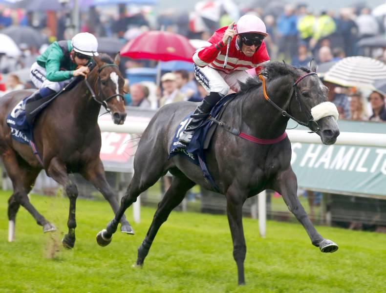 BRITAIN: Brilliant Mecca's Angel lands another Nunthorpe