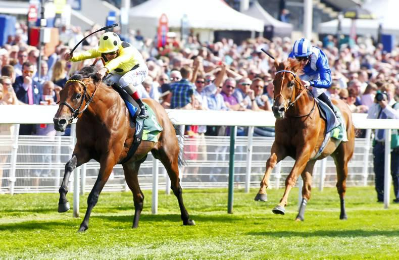YORK WEDNESDAY: Varian's Postponed a worthy winner