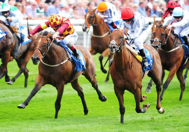 YORK WEDNESDAY: Groom booms again
