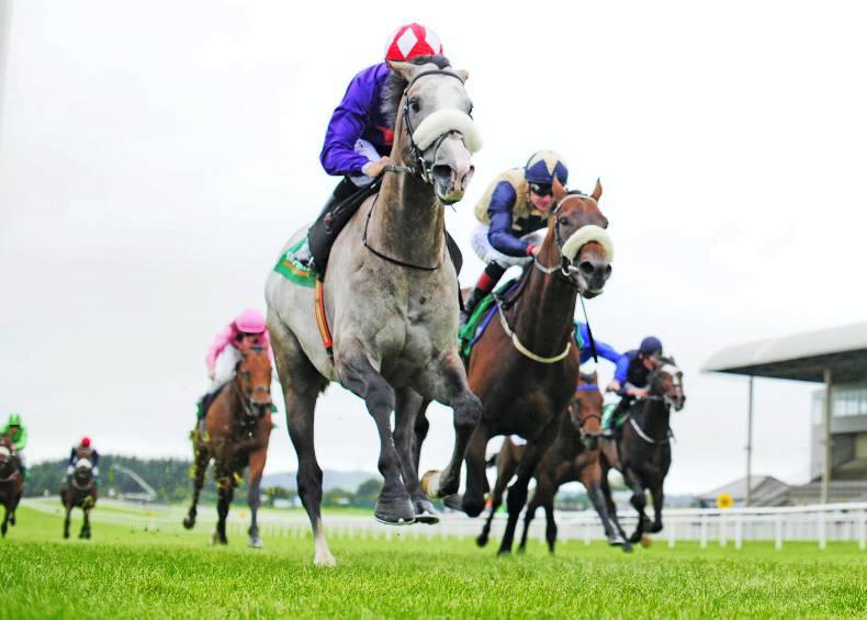 CURRAGH SUNDAY: Success Days steps up in style