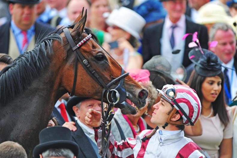 FRANCE: Cirrus and co enjoy retirement