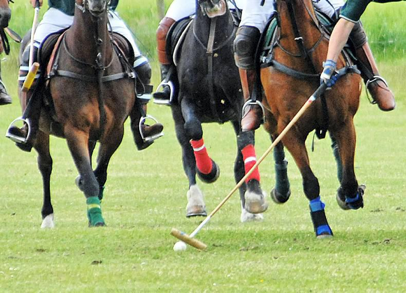 Silver sweep for Horseware