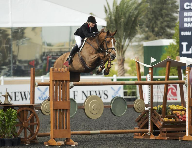INTERNATIONAL: Irish show jumpers win in Europe