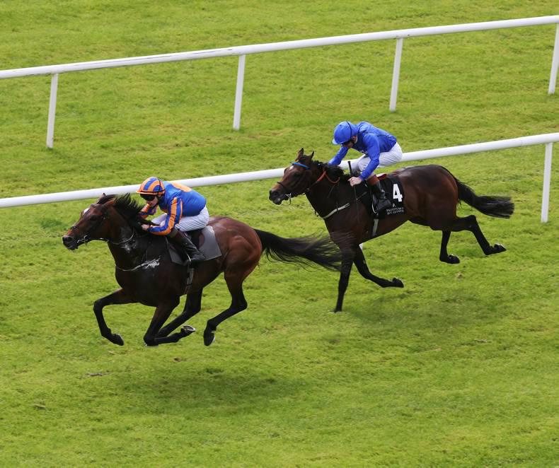 CURRAGH SATURDAY: Order rules as Bunyan hits the big time