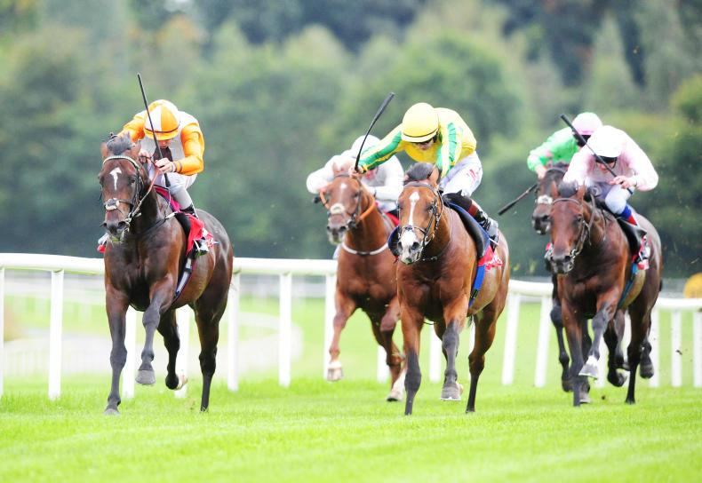 GOWRAN WEDNESDAY: Forrest rules in opener to book Goffs Champions Sale spot