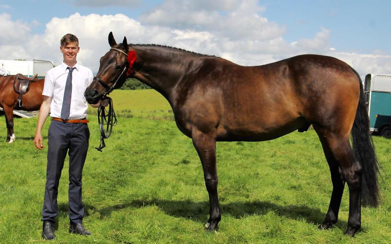 Homebred success for Crosbies