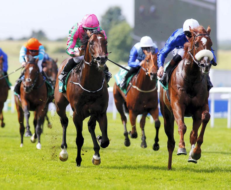 LICW: Churchill and 'George' likely Curragh stars