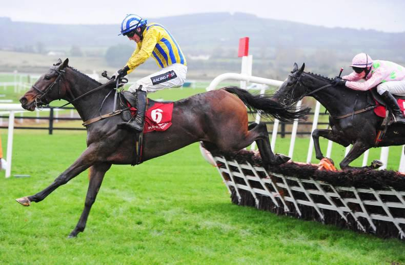 PEDIGREE NOTES: Punchestown Festival 2016.