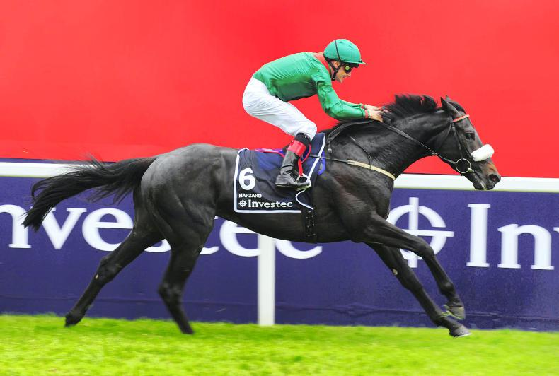 Harzand heads stellar Irish Champion Stakes field