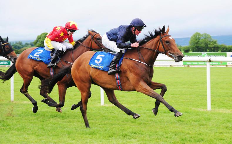 CURRAGH SUNDAY PREVIEW: Promise has the most potential