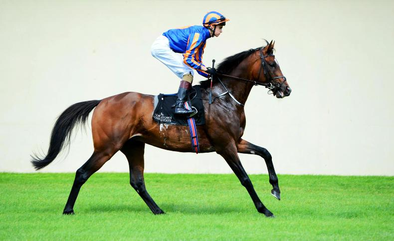 CURRAGH SUNDAY PREVIEW: St George for the St Leger