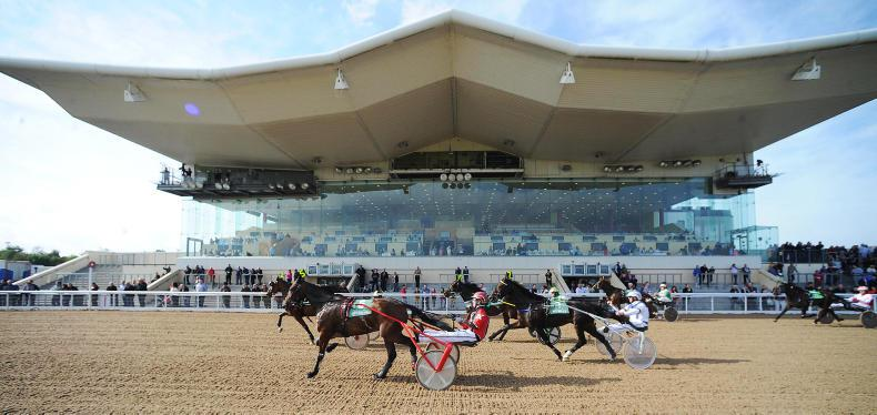 HARNESS RACING: Demon to deliver at Dundalk