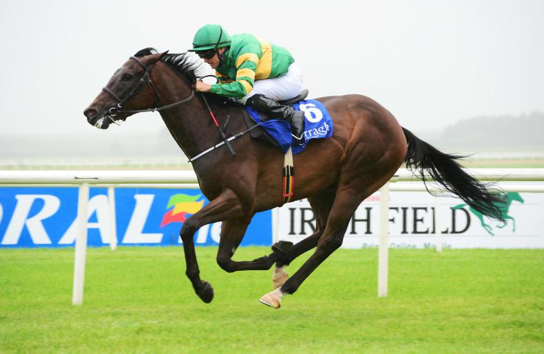 Landfall shines in Leopardstown eclipse for Classic contender Douglas Macarthur