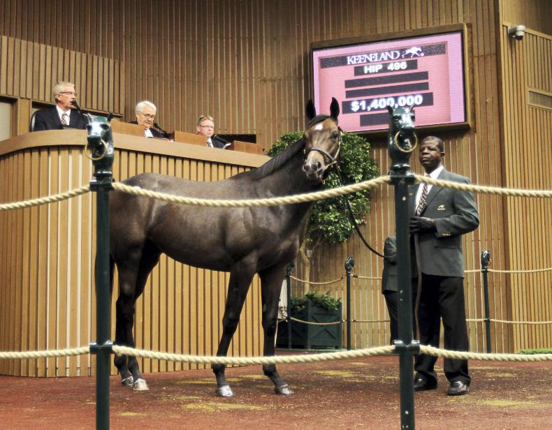 KEENELAND: $1.2 million Tapit colt  likely to join Todd Pletcher