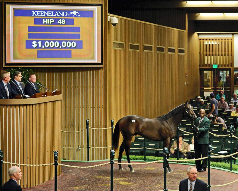 KEENELAND SEPTEMBER SALE: Medaglia d'Oro colt hits the million