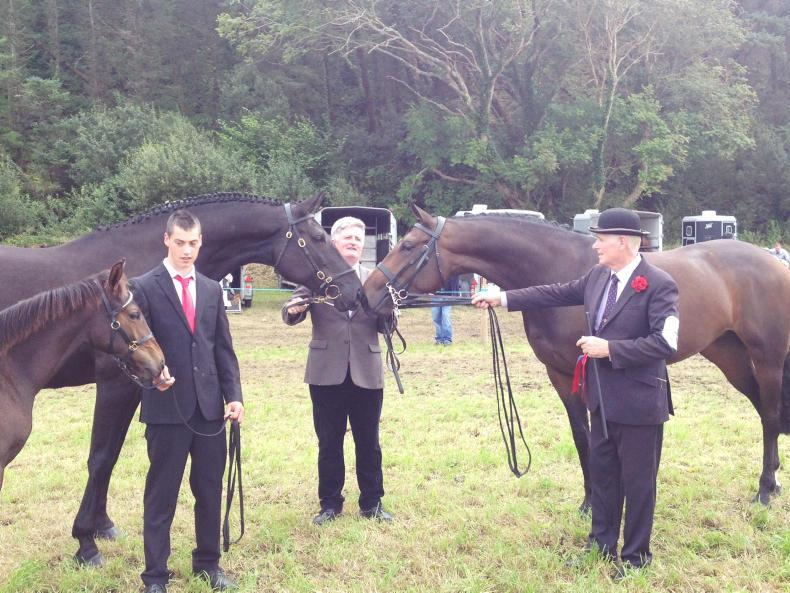 PONY TALES: Madame Noir meets Queen B at Bantry