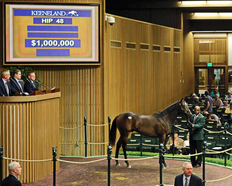 Scat Daddy colt powers to prominence at Keeneland