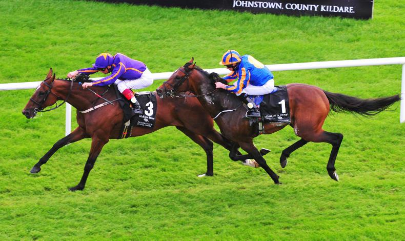 CURRAGH SUNDAY:  Dettori the Brave as Wicklow wins Leger