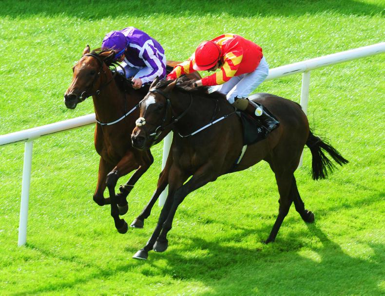 Joseph O'Brien eyes Fillies' Mile with Moyglare heroine Intricately